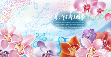 greeting season: Greeting card with orchids flowers Illustration