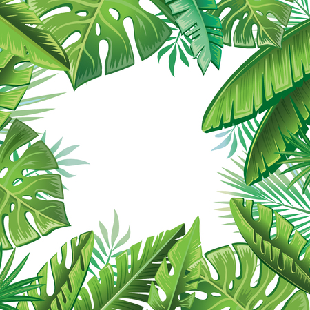 tropical: Tropical leaves Illustration