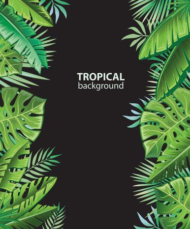 strelitzia: Background with tropical plants Illustration