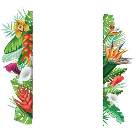 Background with tropical plants Stock Illustratie