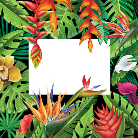 Frame from tropical plants and flowers Illustration
