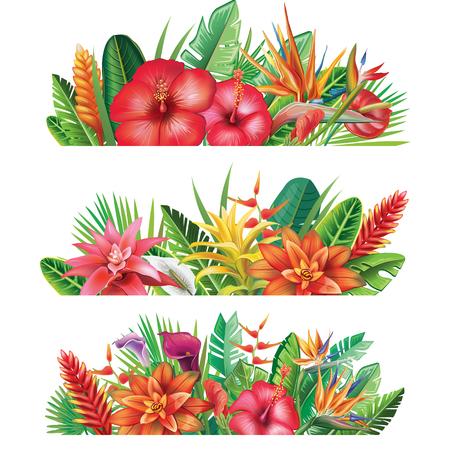 Banner van tropische planten en bloemen illustratie.