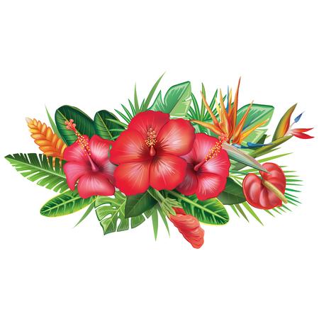 Arrangement from tropical flowers Çizim