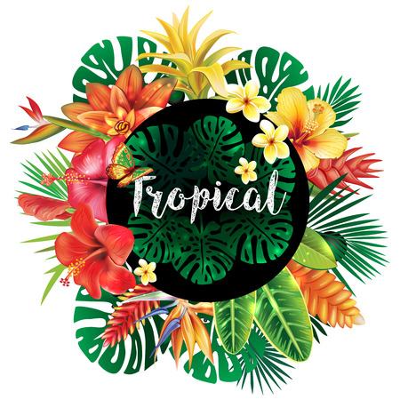 Banner from tropical plants