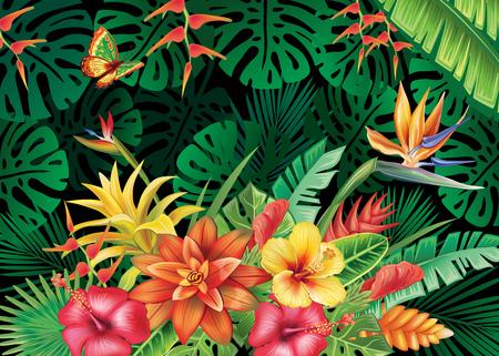 Illustration with tropical plants Фото со стока - 82066289