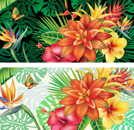 Cards from tropical plants and flowers