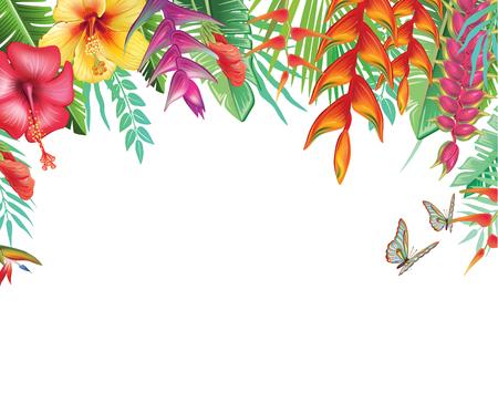 Cadre des fleurs. Vecteurs