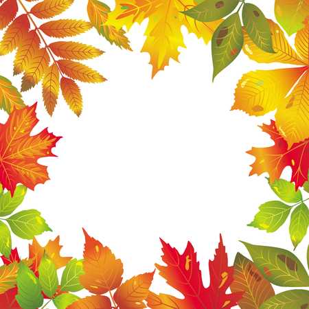 Seasonal frame of autumnal leaves