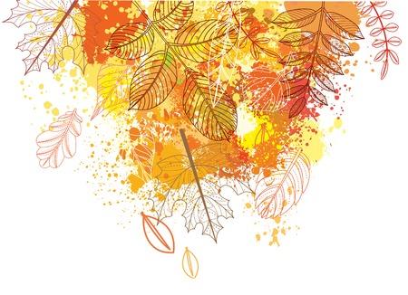 yellow: autumnal leaves Illustration