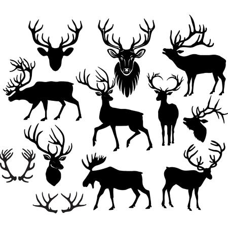 Black silhouettes of deers and deer horns