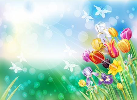 Multi color spring flowers background.