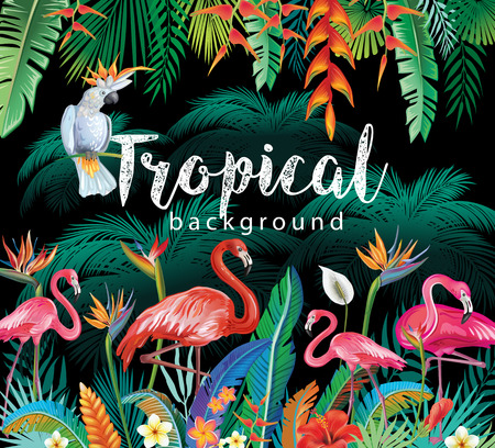 Template with Tropical Flowers Leaves Flamingoes and Parrots Banque d'images - 121826656