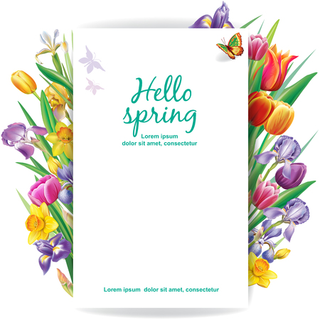 Arrangement with multicolor spring flowers over white background Banque d'images - 123392676