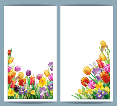 Set cards with arrangement from multicolor spring flowers over white background Banque d'images - 123392700