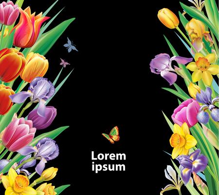 Arrangement with multicolor spring flowers on black background Banque d'images - 124739021
