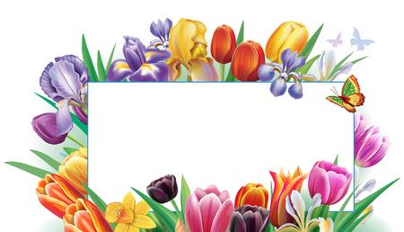 Arrangement with multicolor spring flowers on black background Banque d'images - 118138568