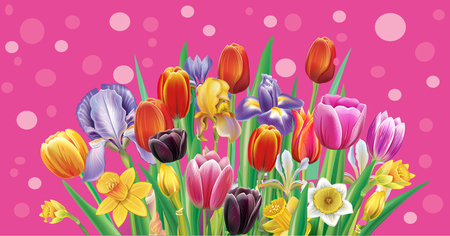 from arrangement with multicolor spring flowers Banque d'images - 124739022