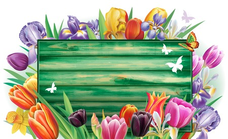 Template for banner from arrangement with multicolor spring flowers Banque d'images - 124688371