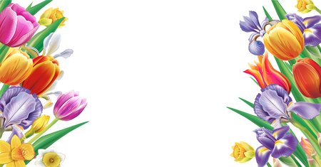 Template for banner from arrangement with multicolor spring flowers Banque d'images - 118439215