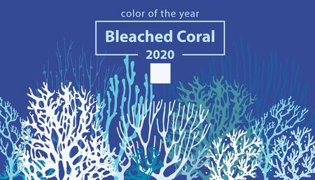 Bleached Coral. Trendy color of 2020. Coral Bleaching occurs rising sea temperatures and Global Warming are killing coral reefs