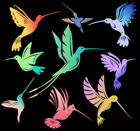 Set of colorful flying hummingbirds Isolated colibri symbol on black
