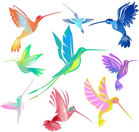 Set of colorful flying hummingbirds