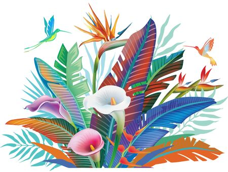 Tropical jungle plants, flower and hummingbirds vector illustration Vettoriali