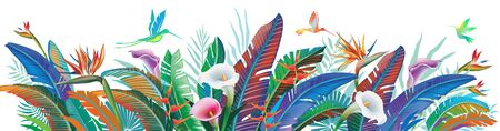 Tropical jungle plants, flower and hummingbirds, vector illustration Vettoriali