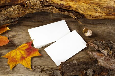 Photo of blank business cards on a autumn background