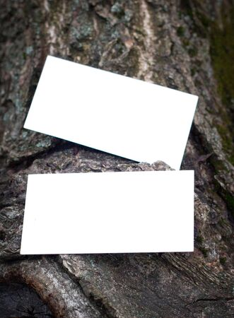 Photo of blank business cards on a wooden background Branding mockup Archivio Fotografico