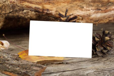 Photo of blank business cards on a autumn background Branding mockup Archivio Fotografico