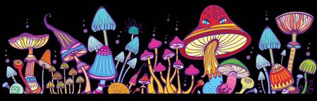 Groups of decorative mushrooms on black vector illustration