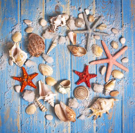 Round frame of seashells and starfishes on blue wooden planks background