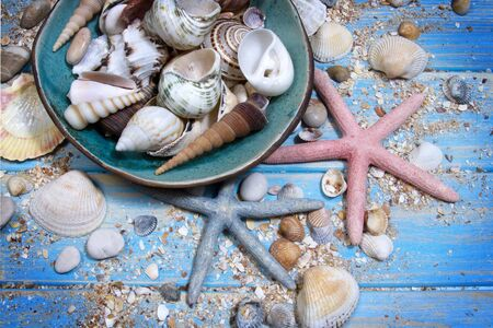 Round frame of seashells and starfishes on blue wooden planks background.
