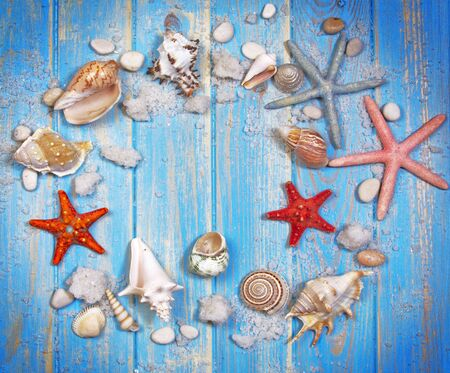 Top view of seashells and starfishes on blue wooden planks background. Creative flat lay concept of summer. Frame template for text