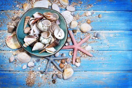 Top view of seashells and starfishes and ceramic plate with shells