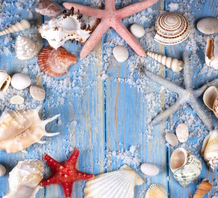 Frame of seashells and starfishes on blue wooden planks. Creative flat lay concept of summer. Frame template for text Archivio Fotografico