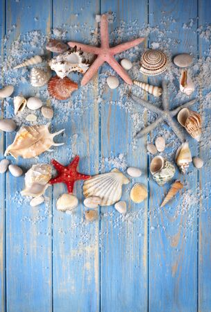 Round frame of seashells and starfishes on blue wooden planks