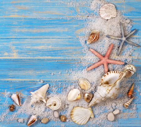 Corner frame of seashells and starfishes on blue wooden planks. Creative flat lay concept of summer. Frame template for text