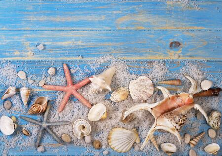 Background of seashells and starfishes on blue wooden planks. Creative flat lay concept of summer.
