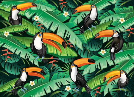 Tropical background from tropical flowers, leaves and toucans