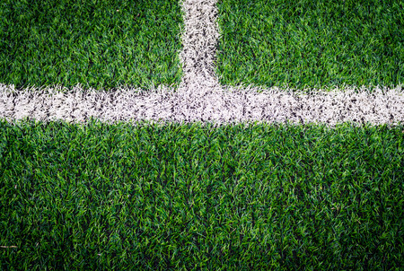 Soccer field with white lines photo