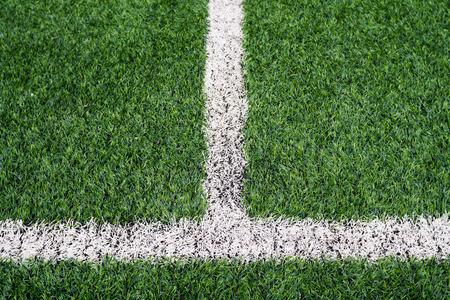lineas blancas: Campo de f�tbol con l�neas blancas