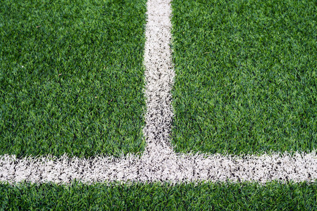 soccer field: Soccer field with white lines