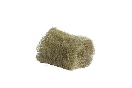 Luffa natural fiber for body scrubbing isolated white photo