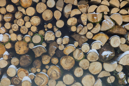 woodpile: Woodpile from dry round fire wood in winter time Stock Photo