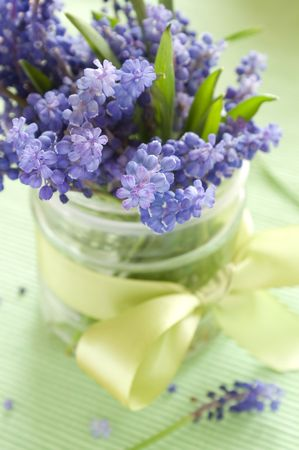 Wild spring flowers in bank with ribbon photo