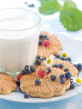 Glass of milk with cookies and berries for breakfast Stock Photo - 7444713