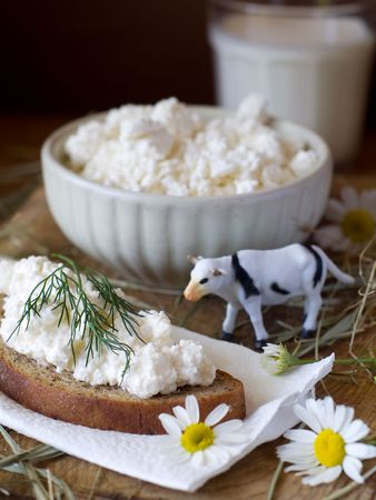 Cottage cheese and milk for breakfast photo