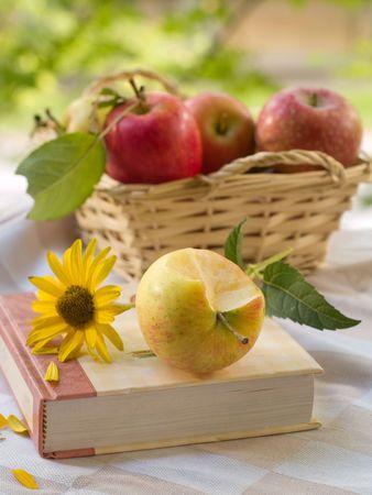 Buch, Apple und Blume in outdoor mit Korb Äpfel im Hintergrund.